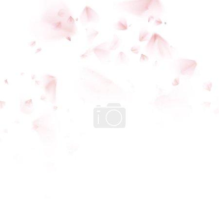 Sakura petal softly. EPS 10