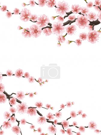 Spring background with cherry blossom. EPS 10