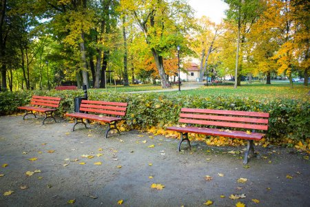 RedThree red, wooden benches in the park in Autum