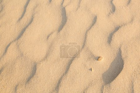 Sand Texture in morning at koh lanta ,Thailand...