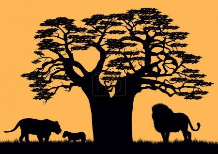 Illustration pour Un lion et une lionne près du baobab . - image libre de droit