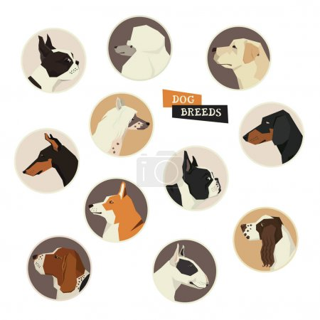 Dog collection. Vector set of 11 dog breeds. Geometric style ico
