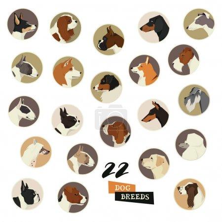 Dog breeds Vector set of 22 round frames