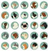 Dog breeds Avatars Vector set of 25 round frames