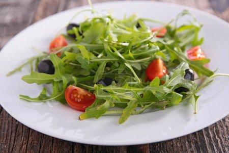 fresh salade arugula