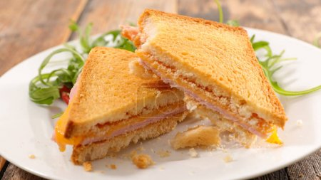 toasted bread with cheese and ham served with salad on white background