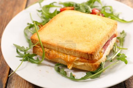 grilled toast with ham and cheese in white plate