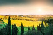 Green hills in Tuscany, Italy.