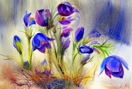 Aquarellmalerei der schönen Frühlingsblumen.