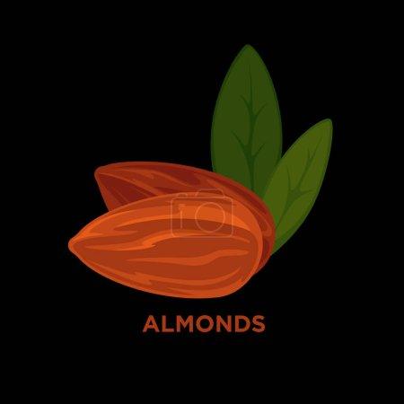 almond nut, cartoon