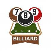 Billiard club logo vector illustration