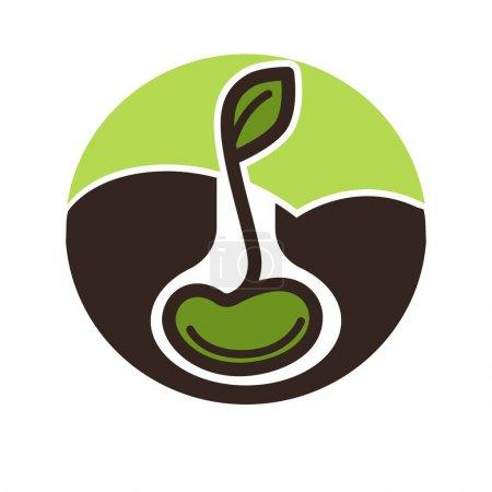 Illustration pour Plante verte de plus en plus de la graine isolé sur fond blanc - image libre de droit