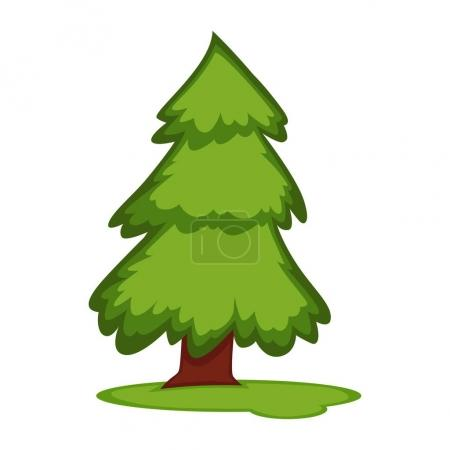 Tall fir tree on piece of grass