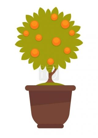 Potted tree with oranges