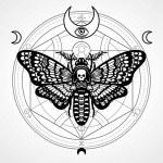 Decorative moth Dead Head. Mystical circle.Esoteri...