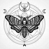 Decorative moth Dead Head Mystical circleEsoteric symbol sacred geometry Sign of the moon Monochrome drawing isolated on a grey background Vector illustration Print posters t-shirt textiles