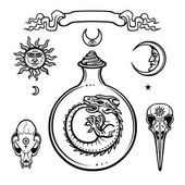 Set of alchemical symbols Origin of life Mystical snakes in a  test tube Religion mysticism occultism sorceryVector illustration isolated on a white background