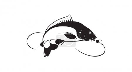 Illustration for Carp fish for logo or print. Fishing sport logo - Royalty Free Image