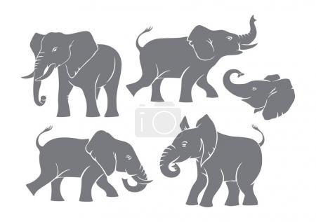 Illustration pour Silhouettes d'éléphants gris, sur fond blanc - image libre de droit