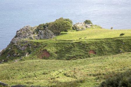 Headland at Murlough Beach; County Antrim