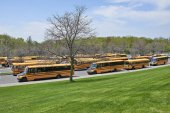 Lot of school buses waiting for children