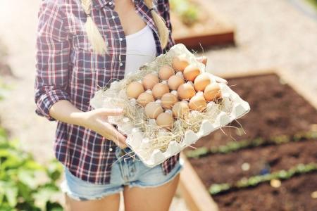 woman with fresh organic eggs