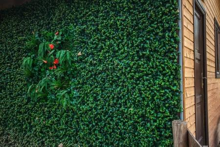 Photo for Eco green wall for the wooden house technology - Royalty Free Image