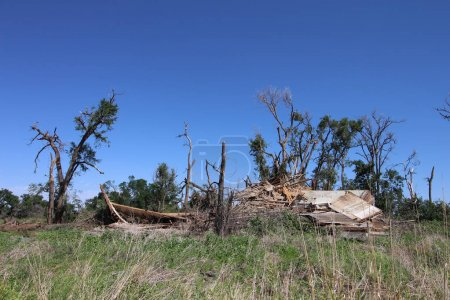 An old farm building and trees destroyed by a tornado.