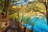 Wooden boardwalk leading along azure lake among autumn woods