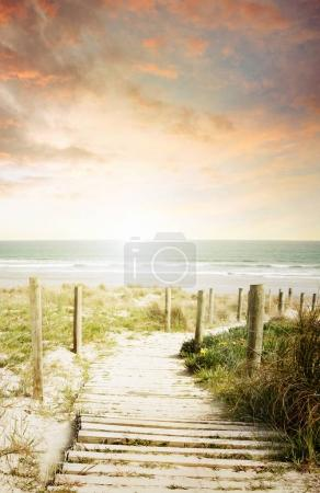 Pathway and beach view