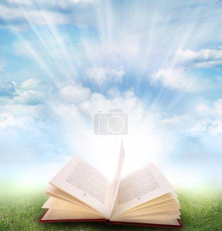 Open book on grass