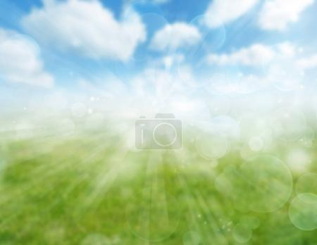 Photo for Blurred green meadow and blue sky spring background - Royalty Free Image