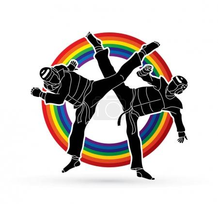 Taekwondo fighting graphic