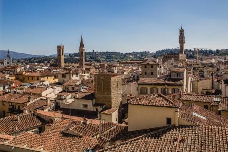 Beautiful overlook of Florence