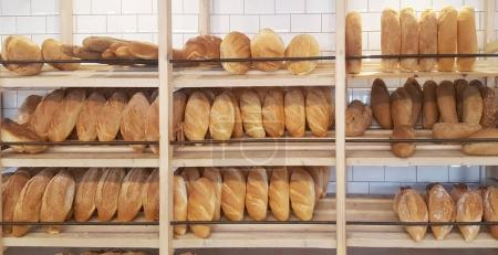 Photo for Bakery Store. Shelves with various bread - Royalty Free Image