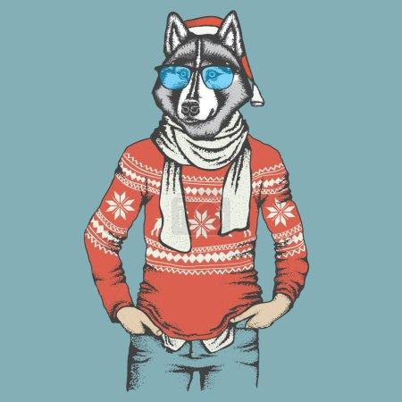 siberian husky in human sweatshirt