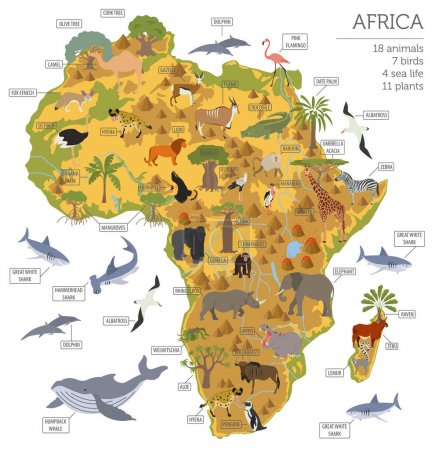 Illustration for Flat Africa flora and fauna map constructor elements. Animals, birds and sea life isolated on white big set. Build your own geography infographics collection. Vector illustration - Royalty Free Image