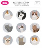 Cat breeds icon set flat style isolated on white Create own infographic about pets Vector illustration