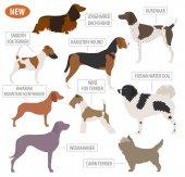 Hunting dog breeds set icon isolated on white  Flat style