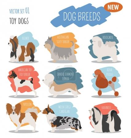 Miniature toy dog breeds, set icon isolated on white . Flat styl
