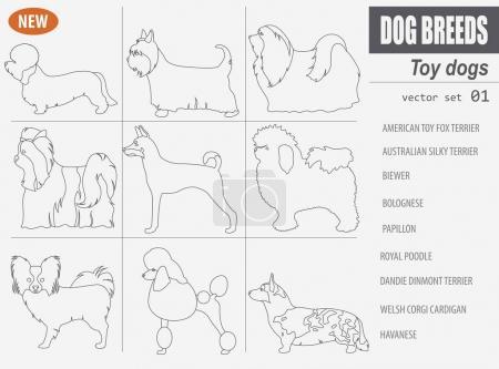 Miniature toy dog breeds, set icon isolated on white . Outline,