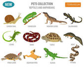 Pet reptiles and amphibians icon set flat style isolated on whit