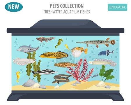 Inusual acuario de agua dulce peces razas icono conjunto de estilo plano isol