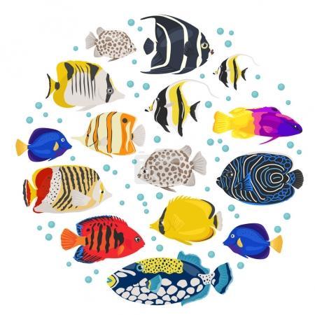 acuario de agua dulce peces razas icono conjunto de estilo plano aislado en