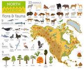"""Постер, картина, фотообои """"Северной Америке флоры и фауны карта, плоские элементы. Животные, птицы"""""""
