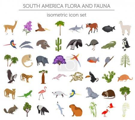 Photo pour Isometric 3d Amérique du Sud éléments de flore et de faune. Animaux, oiseaux et vie marine. Créez votre propre collection d'infographies géographiques. Illustration vectorielle - image libre de droit