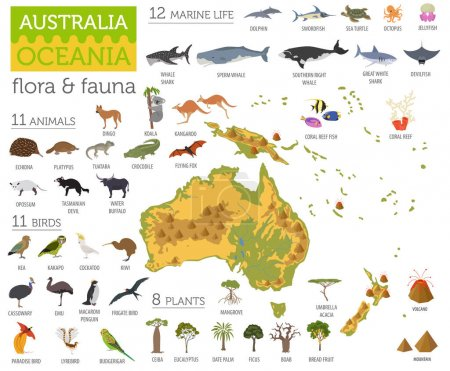 Illustration for Australia and Oceania flora and fauna map, flat elements. Animals, birds and sea life big set. Build your geography infographics collection. Vector illustration - Royalty Free Image