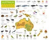 """Постер, картина, фотообои """"Австралии и Океании флоры и фауны карта, плоские элементы. Животное"""""""