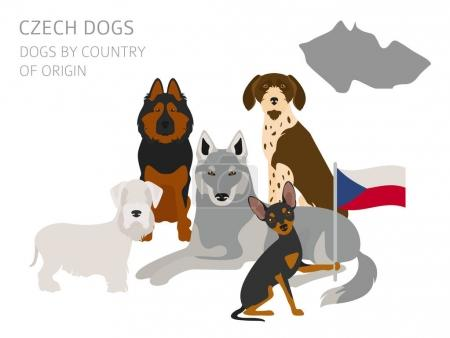 Dogs by country of origin. Czech dog breeds. Infographic templat