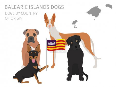 Dogs by country of origin. Spain. Balearic islands dog breeds. I